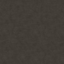 Dune Marburg : 32420
