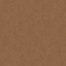 Dune Marburg : 32431