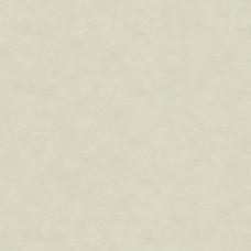 Dune Marburg : 32438
