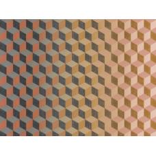 Cubiq : 200419