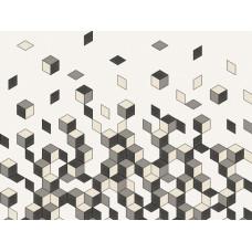 Cubiq : 200452